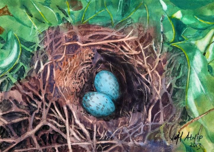 """Mockingbird Nest"" original fine art by Jeff Atnip"