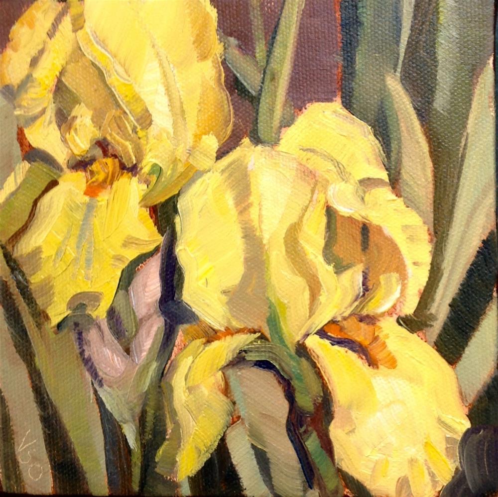 """""""Yellow Iris"""" original fine art by Valerie Orlemann"""