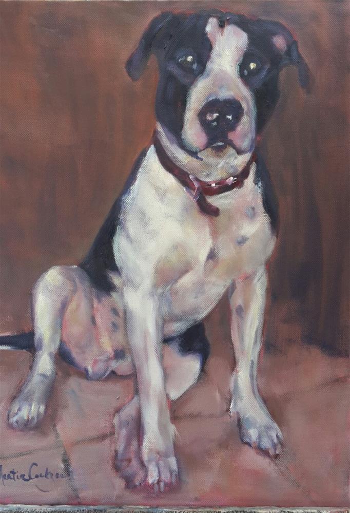 """""""Dexter"""" original fine art by Rentia Coetzee"""