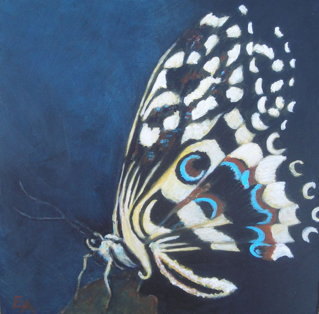 """Butterfly challenge"" original fine art by Elizabeth Elgin"