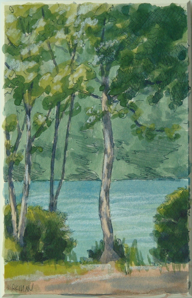 """Sunlit Sapling"" original fine art by Rita Kirkman"