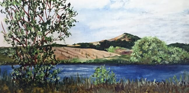 """Napa Valley"" original fine art by Nan Johnson"