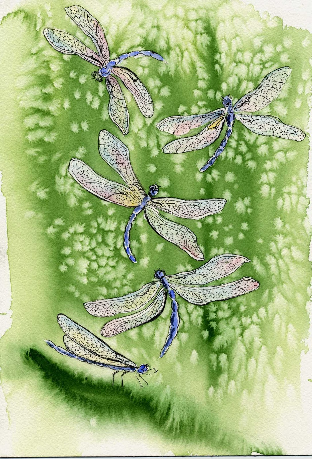 """Dragonfly Reality"" original fine art by Michelle Wolfe"