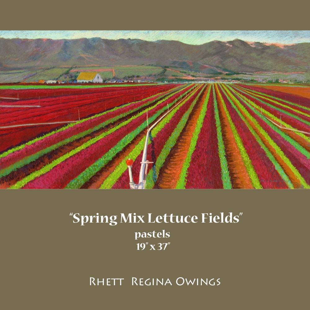 """""""Spring Mix Lettuce Fields"""" original fine art by Rhett Regina Owings"""
