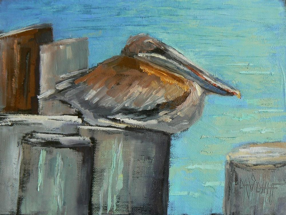 """Daily Painting, Pelican, Florida Hunker Down 6x8"" original fine art by Carol Schiff"