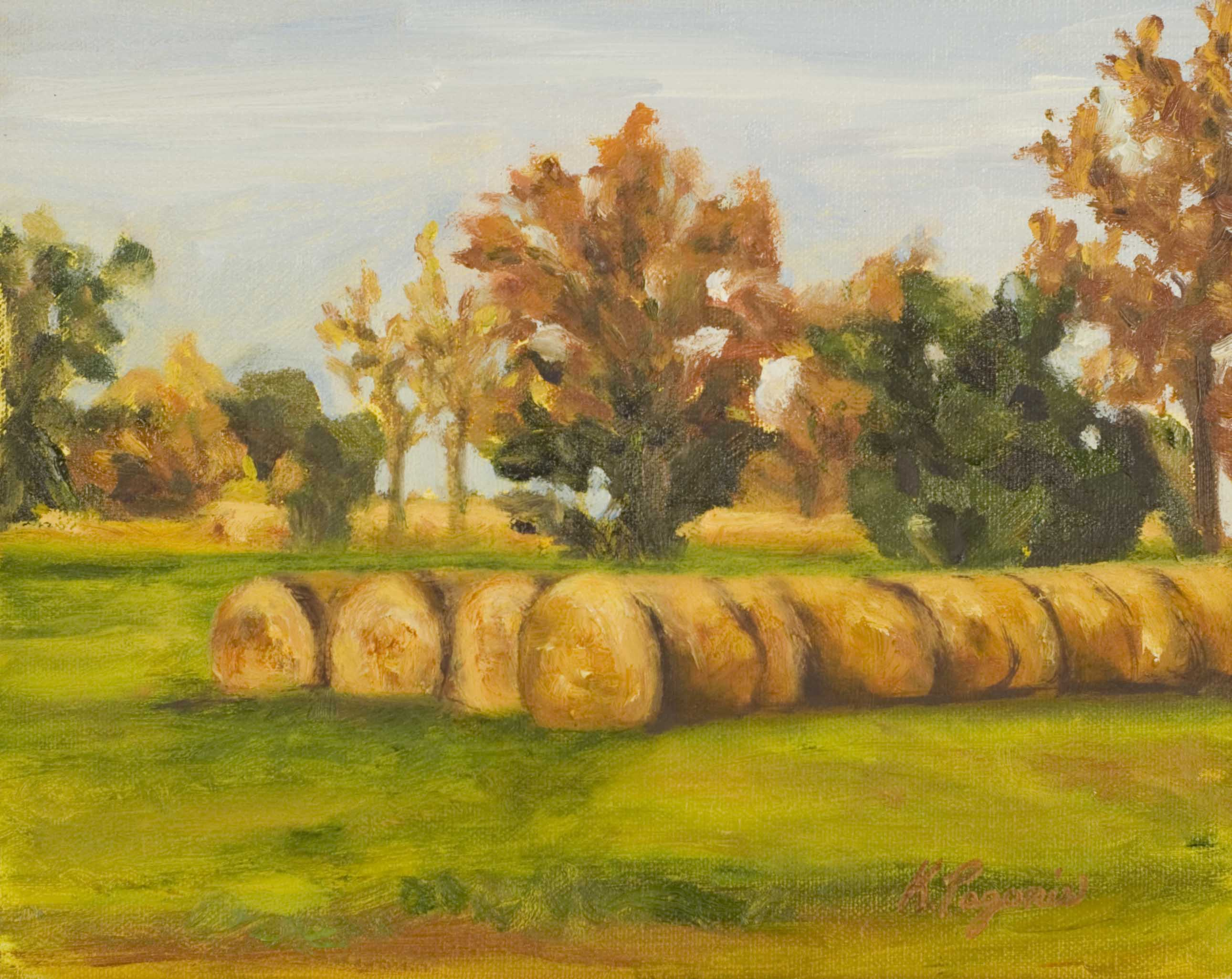 """Rolling in the Hay"" original fine art by Kimberly Pagonis"