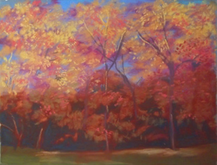 """Autumn Trees"" original fine art by Becky Chappell"
