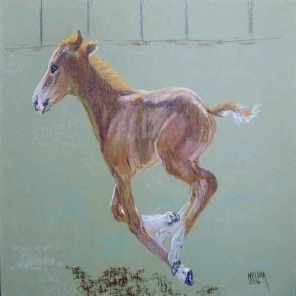 """Legs"" original fine art by Nelvia  McGrath"