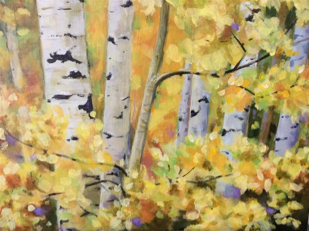 """Fall Aspens"" original fine art by wendy black"