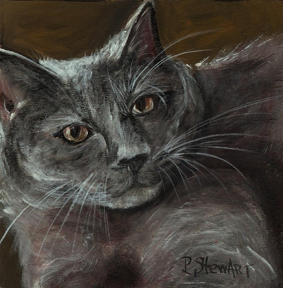 """6x6 Grey Tabby Cat, a la Zorn, Acrylic SFA on square Wood Panel 3/4 inch thick"" original fine art by Penny Lee StewArt"
