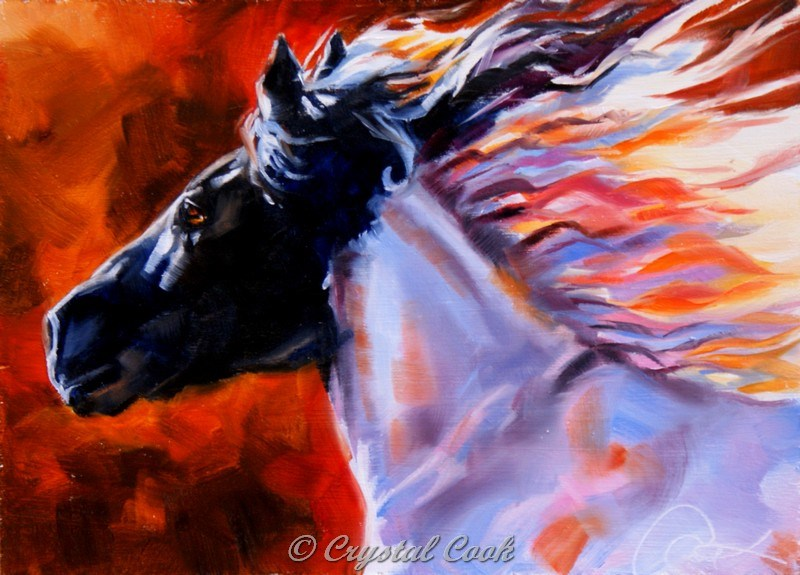 """Sun Seeker"" original fine art by Crystal Cook"