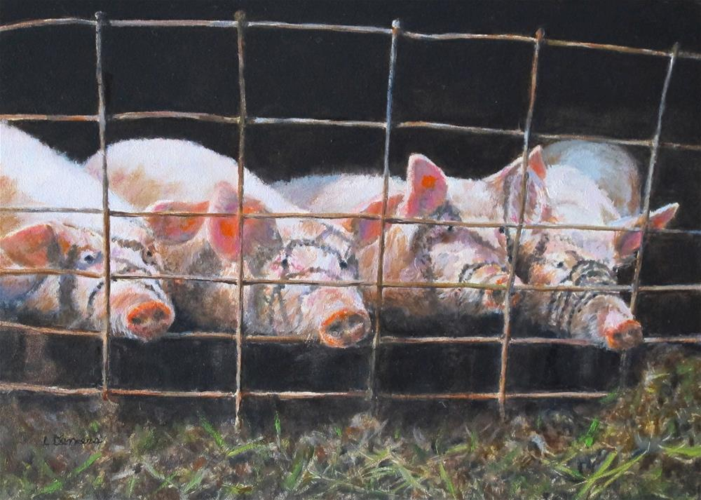 """Pigs at the Fence"" original fine art by Linda Demers"