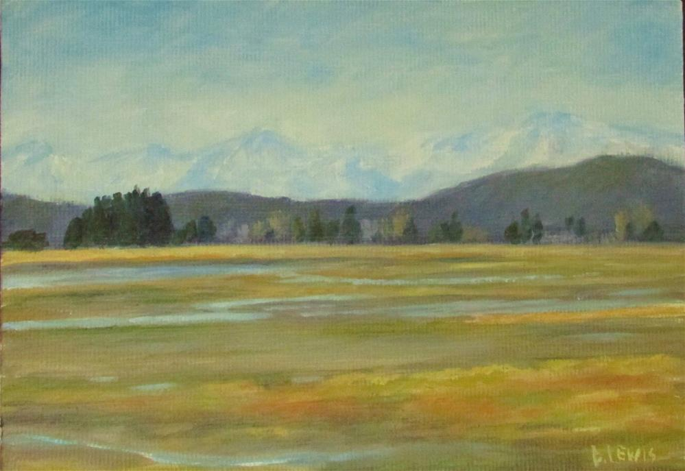 """Juneau Flats"" original fine art by Christine Lewis"