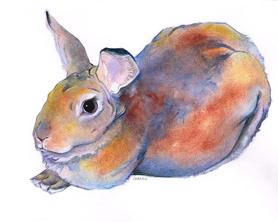 """Bunny"" original fine art by Annabel Chance"