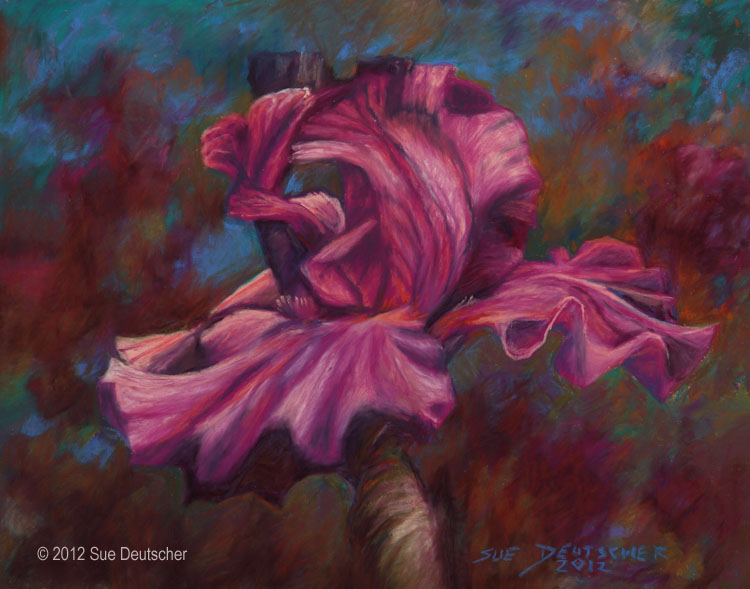 Purple Iris original fine art by Sue Deutscher