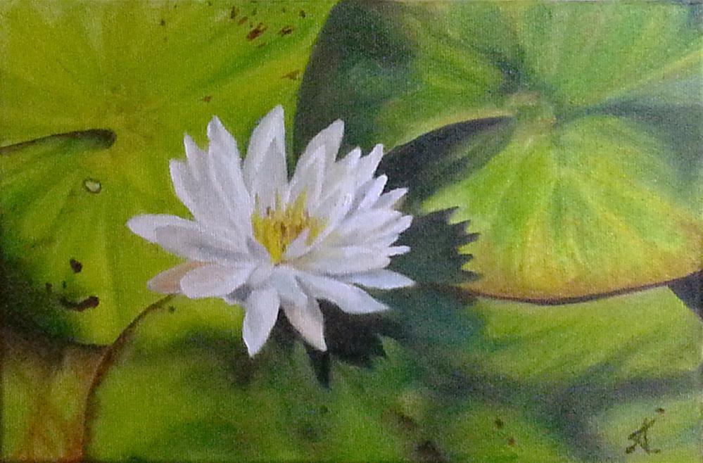 """""""white symphony"""" original fine art by Konstantia Karletsa"""
