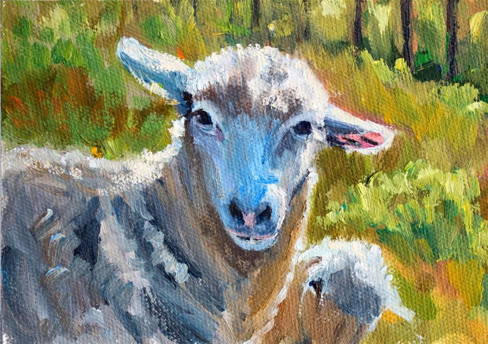 """KMD2947 Innocent Curiosity by Colorado artist Kit Hevron Mahoney (7x5 original oil, lamb, sheep, ani"" original fine art by Kit Hevron Mahoney"
