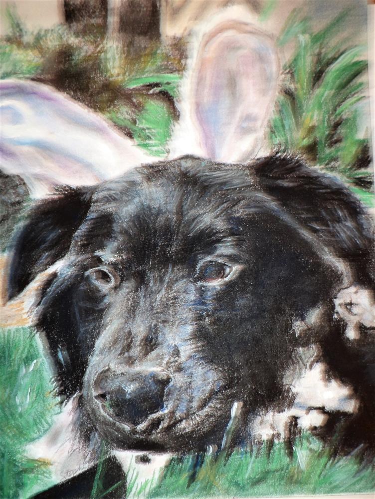 """Dog with Bunny Ears"" original fine art by tara stephanos"