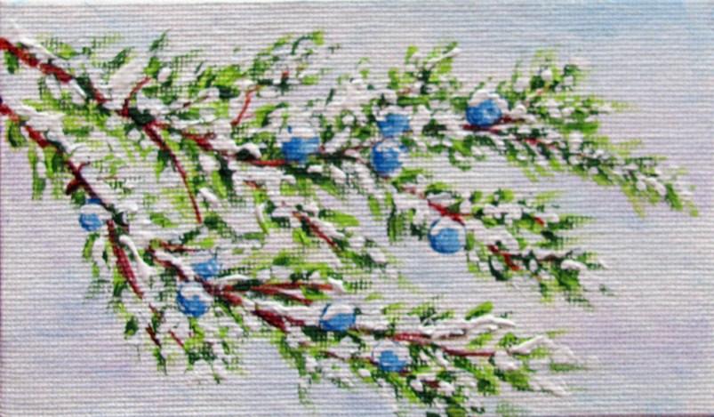 """Snow on Juniper 1"" original fine art by Nan Johnson"