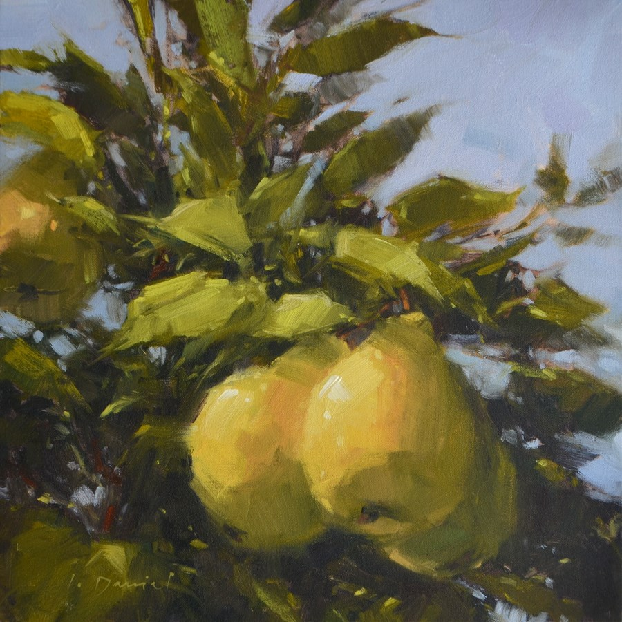 """Golden Pears - Show Tip #2"" original fine art by Laurel Daniel"
