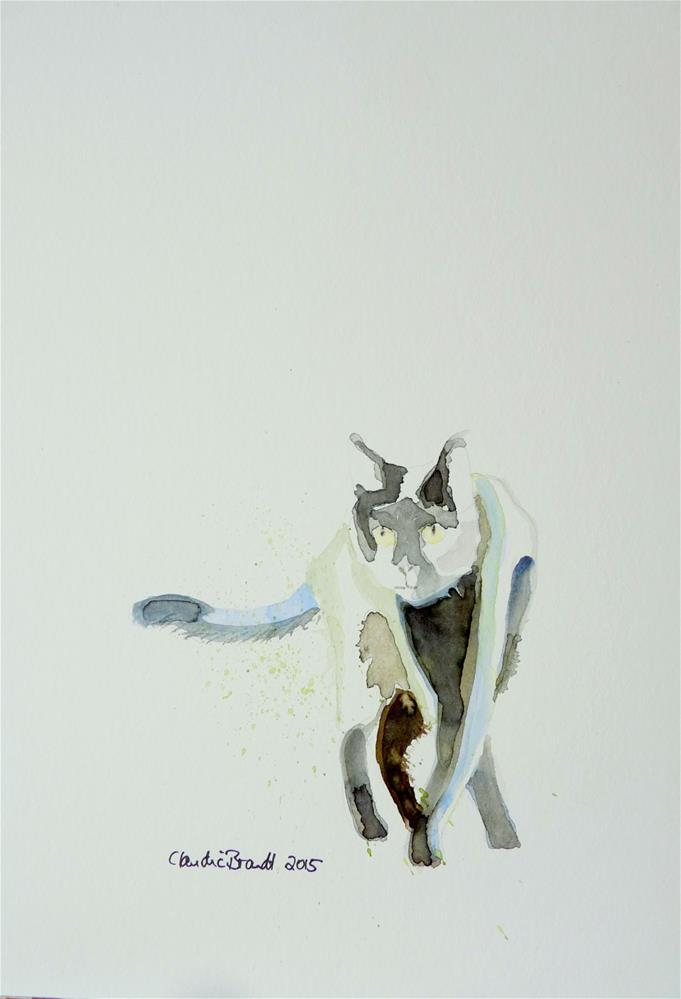 """cat"" original fine art by Claudia Brandt"