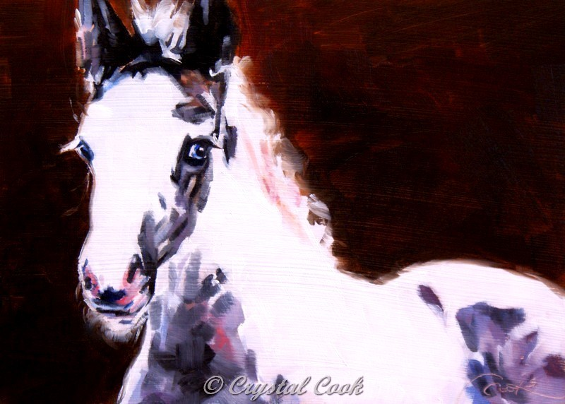 """Wide Eyed Innocence"" original fine art by Crystal Cook"
