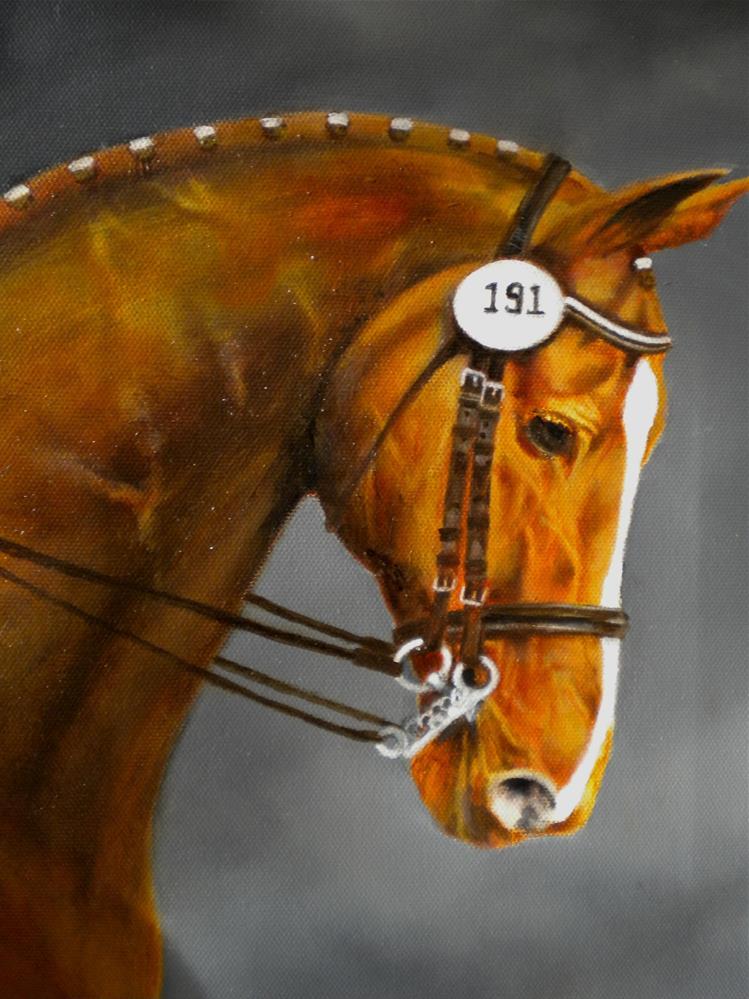 """""""Equine portrait Oil"""" original fine art by Hilarie Johnson"""