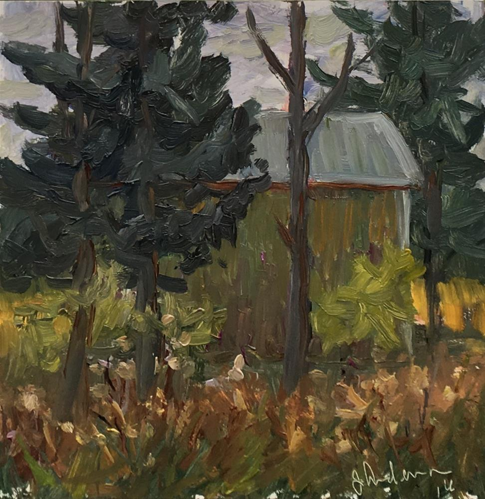 """""""Back of the barn"""" original fine art by Judith Anderson"""