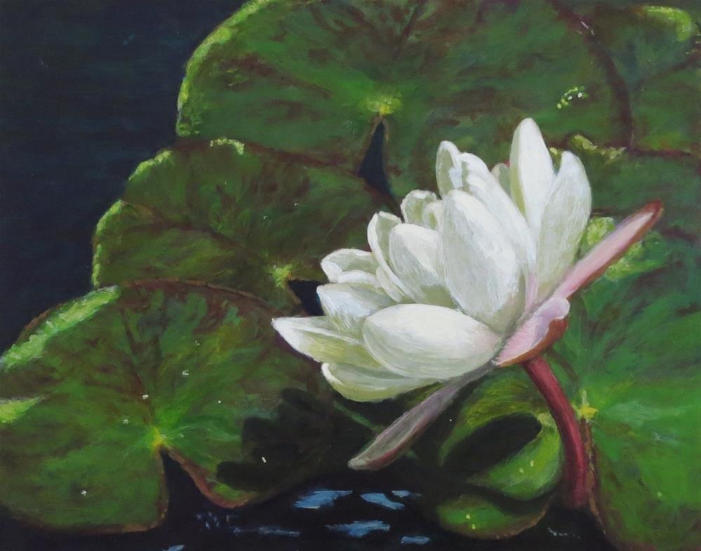 """Water Lily I"" original fine art by Elizabeth Elgin"