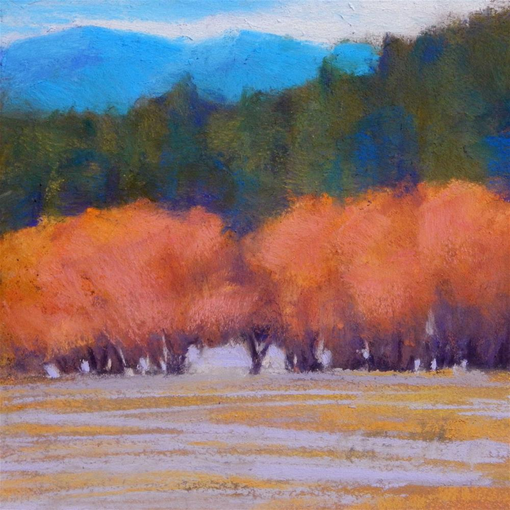 """Trees Near Elliston"" original fine art by Carolyn Caldwell"