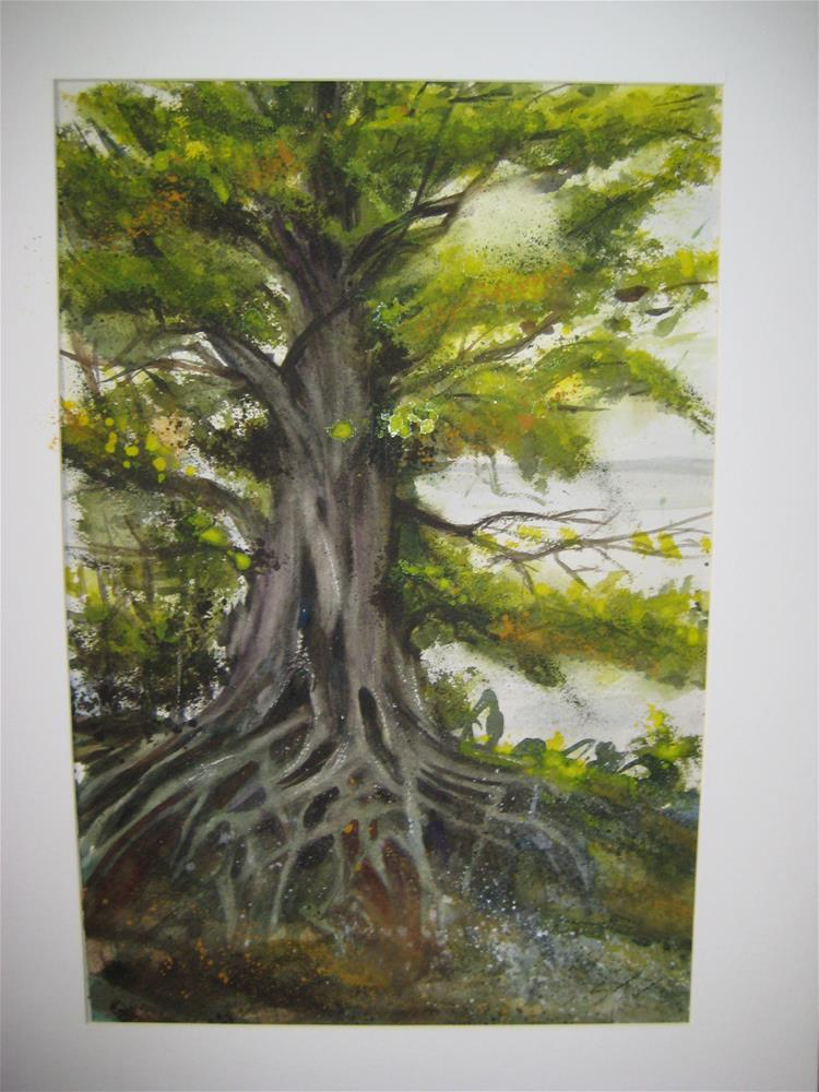 """Large Tree Roots"" original fine art by Susan Brens"