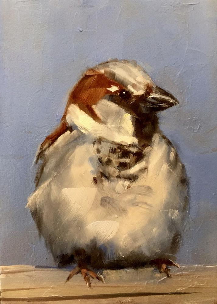 """Perky Sparrow"" original fine art by Gary Bruton"
