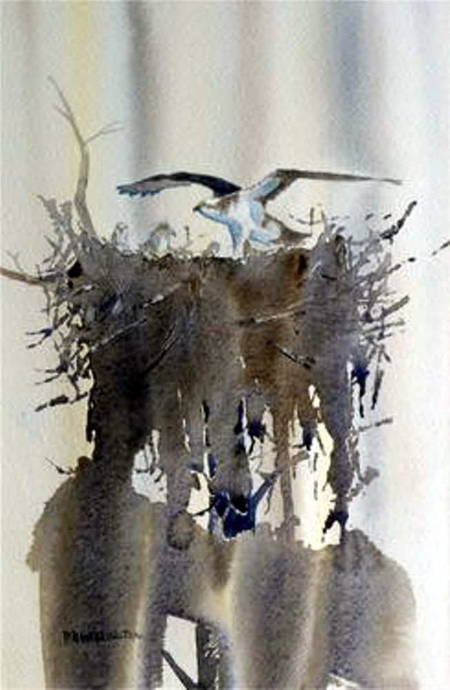 """Osprey and Chicks"" original fine art by Peter Wellington"