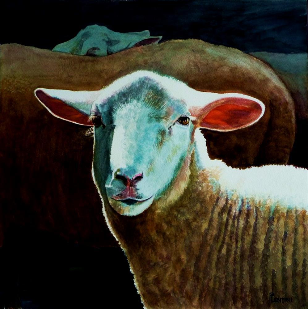 """Three Sheep"" original fine art by Peter Lentini"