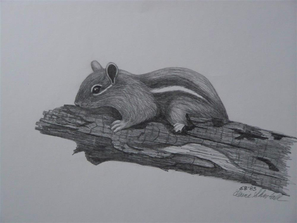 """Chipmunk on a Log"" original fine art by Elaine Shortall"