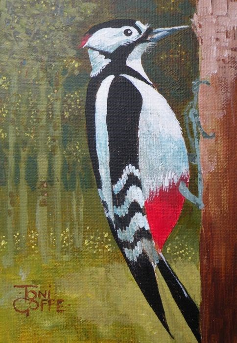 """Great Spotted Woodpecker"" original fine art by Toni Goffe"