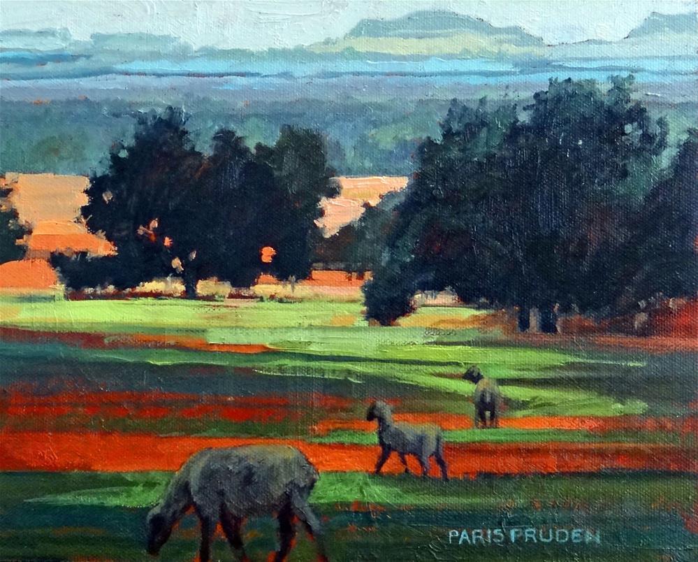 """Hill Country Sheep"" original fine art by Nancy Paris Pruden"