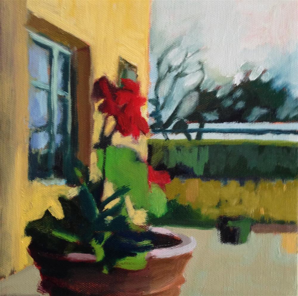 """""""December Geranium"""" original fine art by Pamela Hoffmeister"""