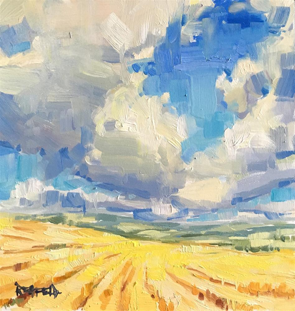 """Oregon Wheatfields"" original fine art by Cathleen Rehfeld"