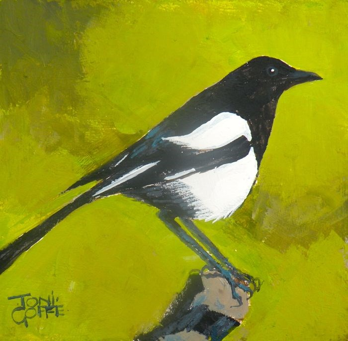 """Magpie"" original fine art by Toni Goffe"