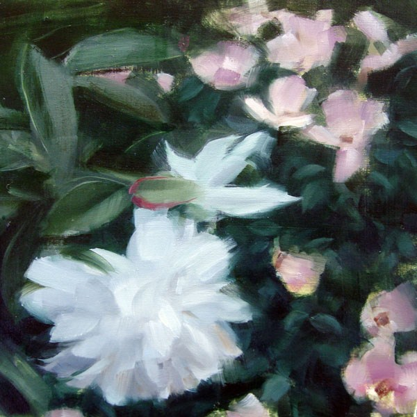 """White Dhalia and Ballerina Roses (no.72)"" original fine art by Michael William"