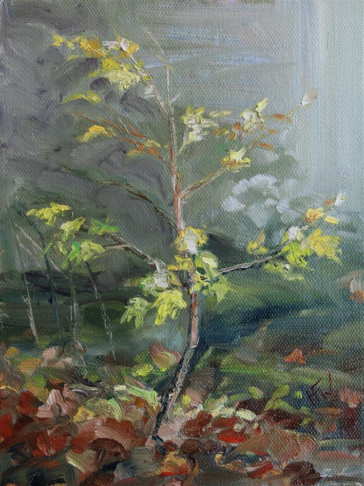 """Tiny Maple"" original fine art by H.F. Wallen"