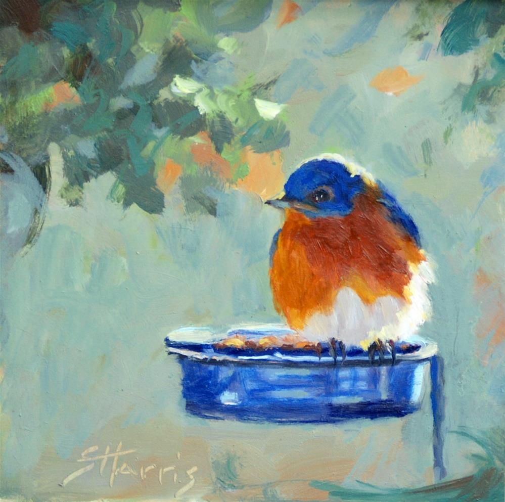 """The Blue Feeder"" original fine art by Sandra L Harris"