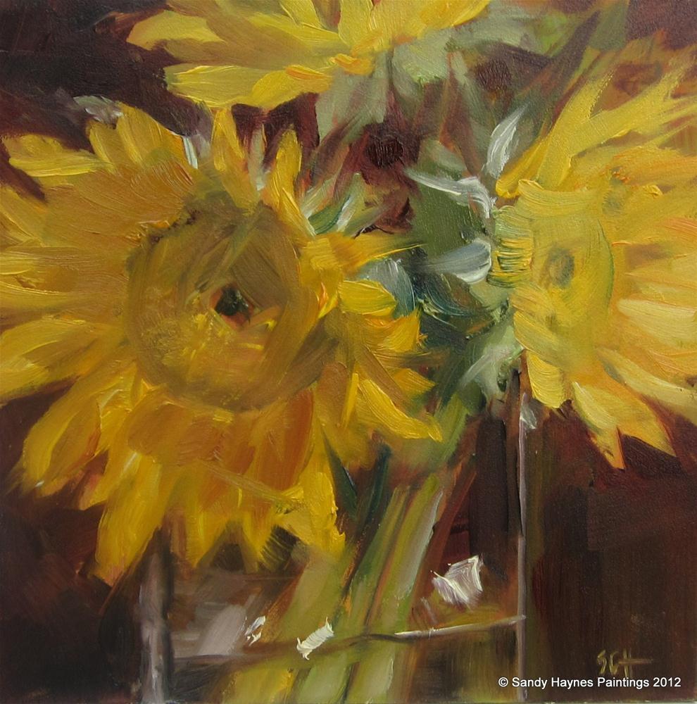 """Sunflower study"" original fine art by Sandy Haynes"