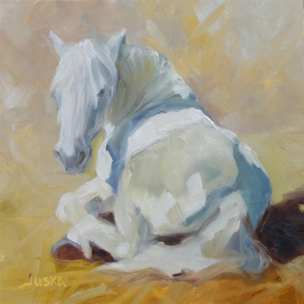 """Study of White Horse Napping"" original fine art by Elaine Juska Joseph"
