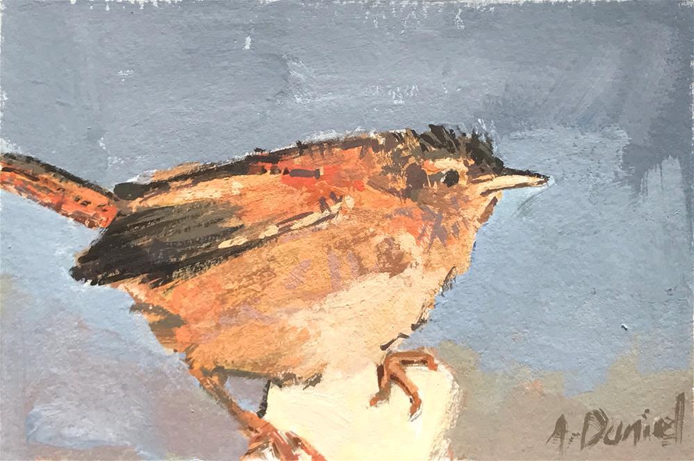 """Marsh Wren #6"" original fine art by Andrew Daniel"