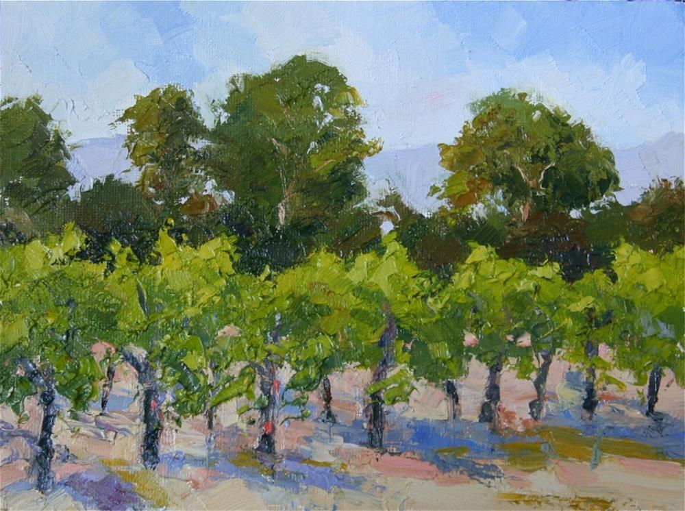 """Suisun Valley Vines"" original fine art by Mark Bidstrup"
