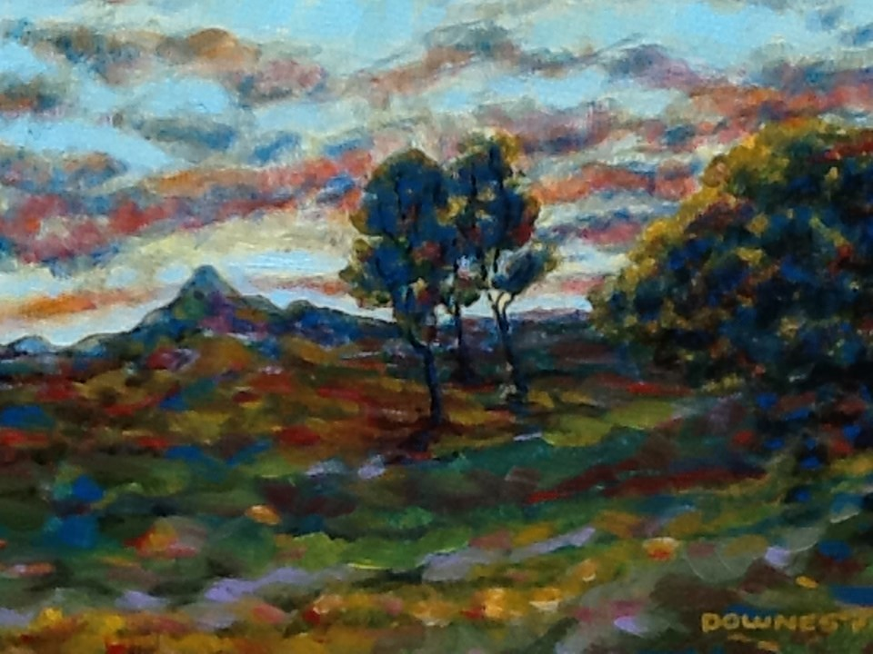 """094 MOUNT WARNING 27"" original fine art by Trevor Downes"