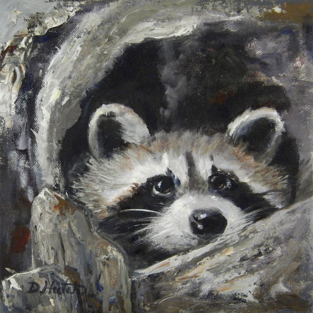 """Raccoon"" original fine art by Diane Hutchinson"