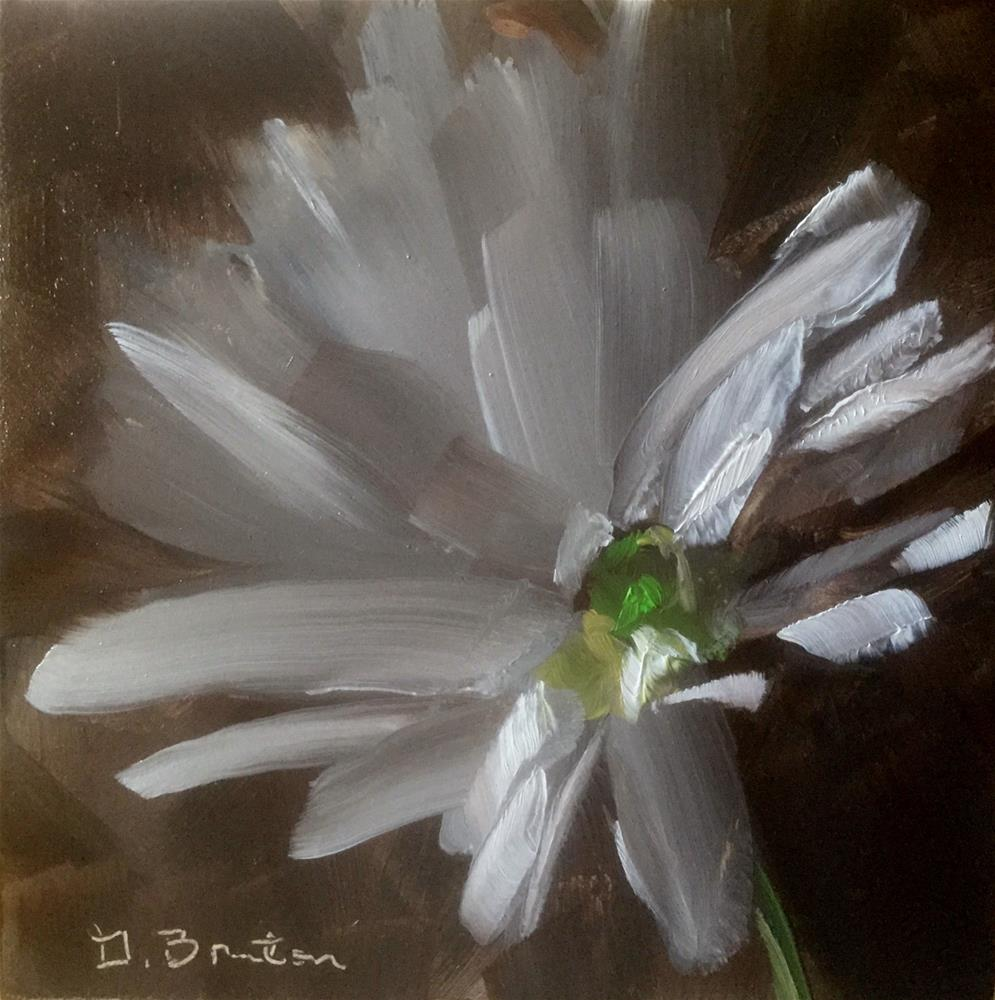 """Daisy Study II"" original fine art by Gary Bruton"